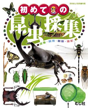 初めての昆虫採集